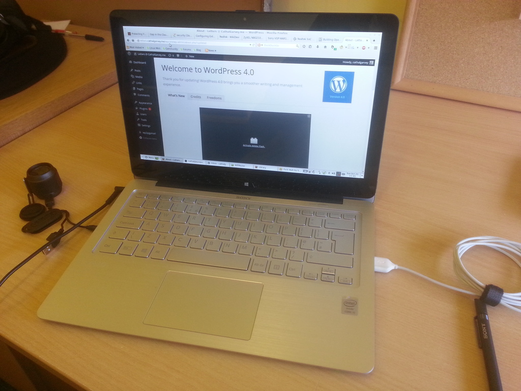 LMDE on Sony Vaio Flip 13